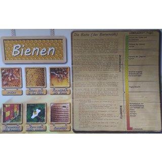 "Poster "" Die Bienen"", 480 x 680 mm"